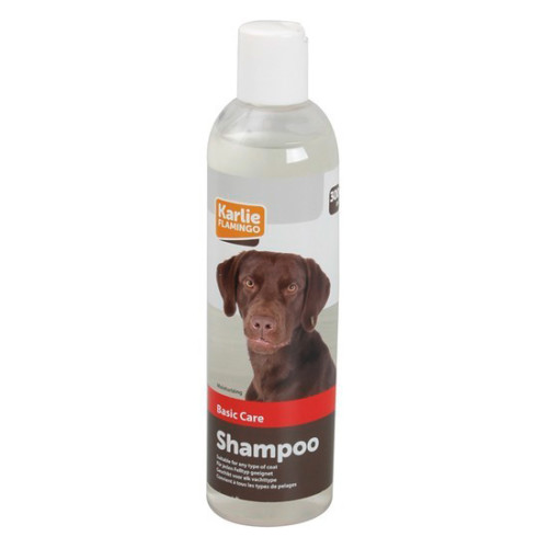 Basic Care Shampoo 300ml