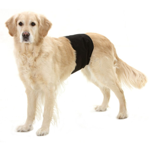 Dog pant black 74 x 23 cm