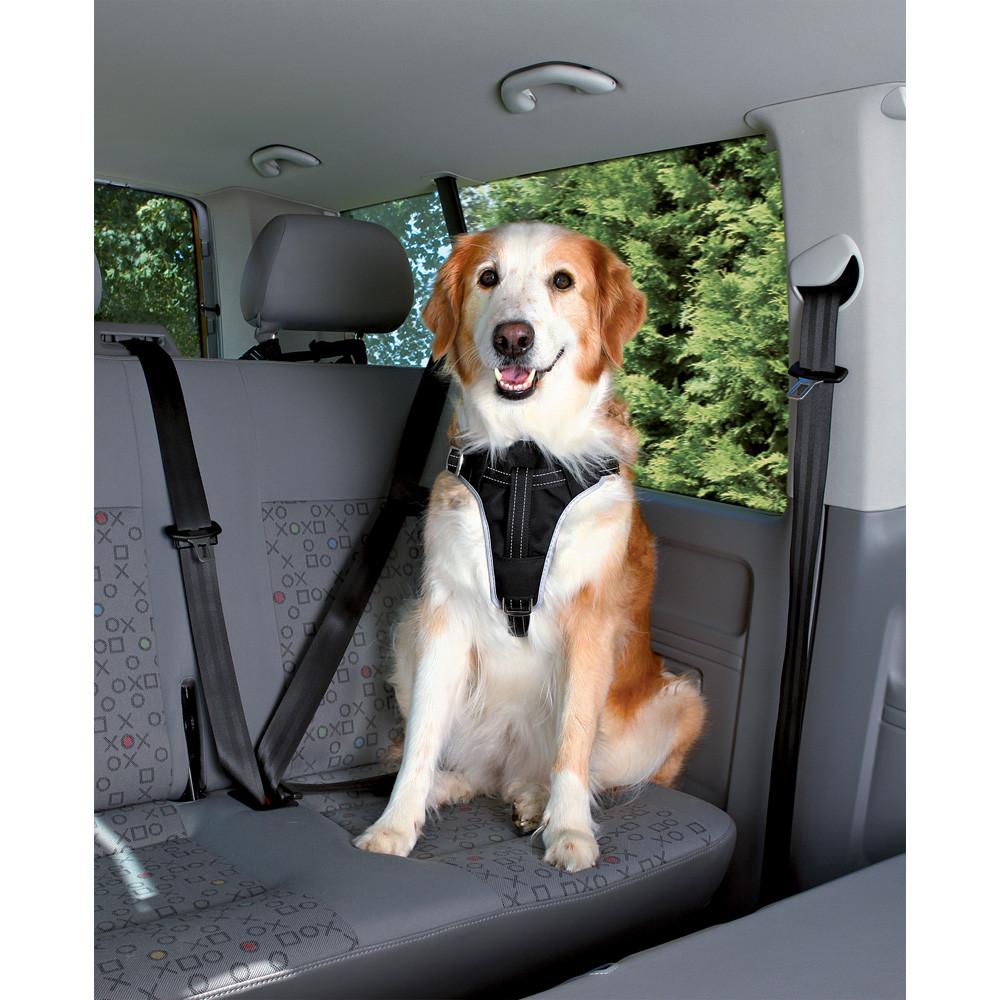 Bilsele Dog Protect M: 50-65 cm/20 mm sv