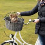 Cykelkorg Grå max 5 kg 44x34x35 cm