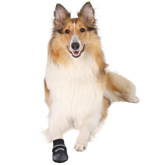 Hundskor Walker professional 2-pack nr 2
