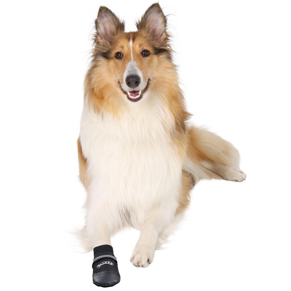 Hundskor Walker professional 2-pack nr 4