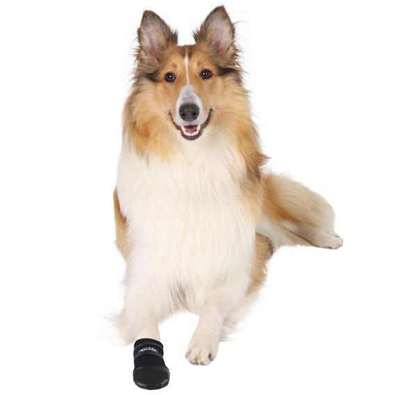 Hundsko neopren 2-pack XLarge