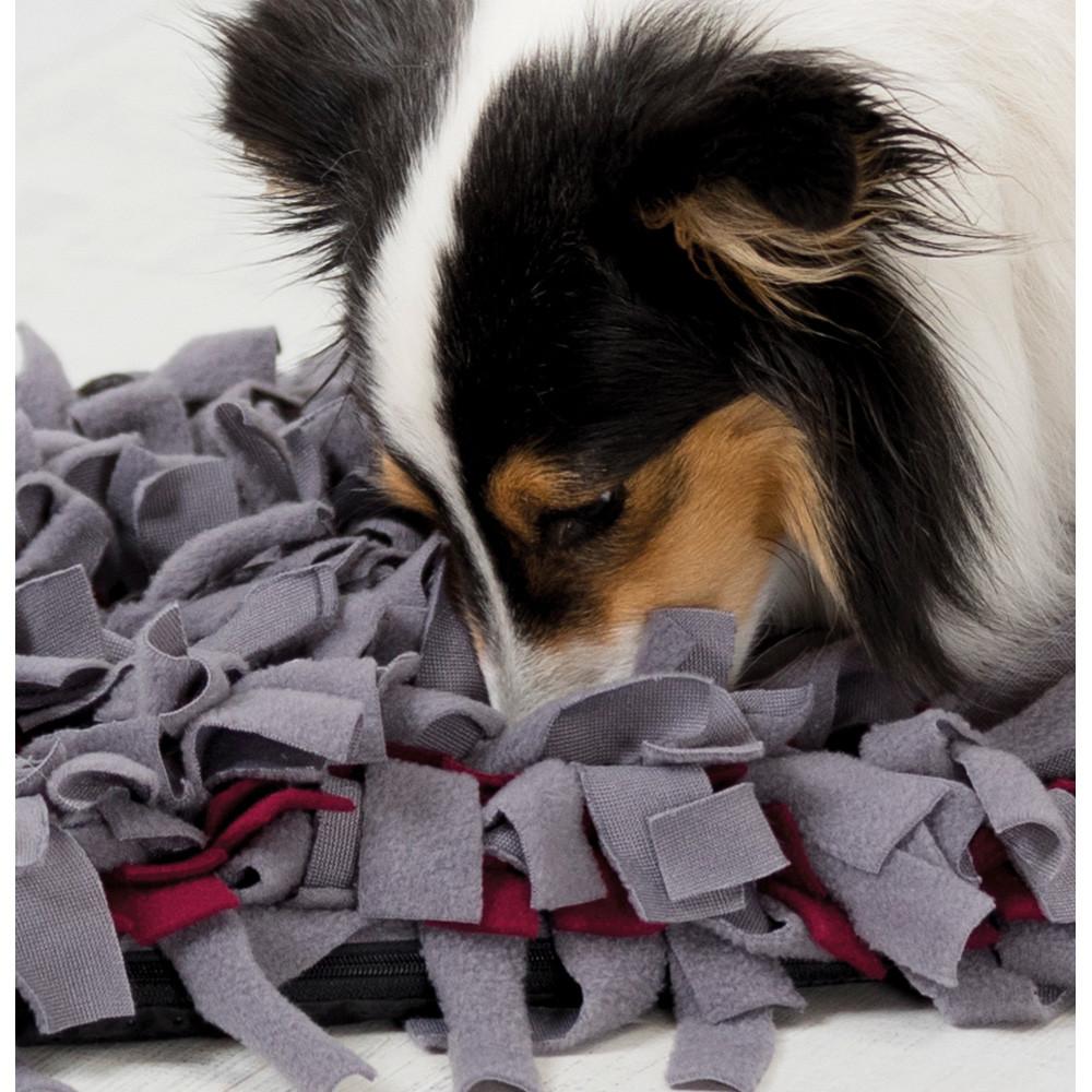 "Aktivitetsfilt ""Sniffing Carpet"" 50×34 cm"