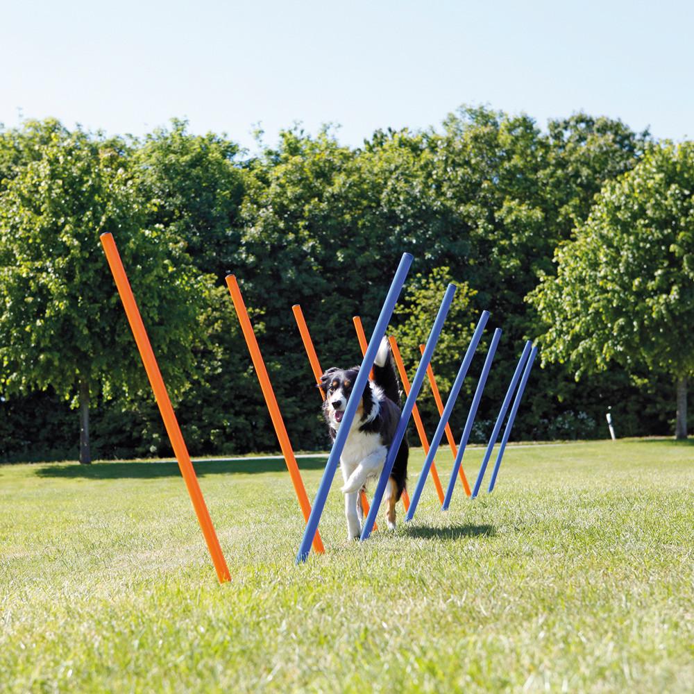 Agility 12 st Slalompinnar Plast 115 cm