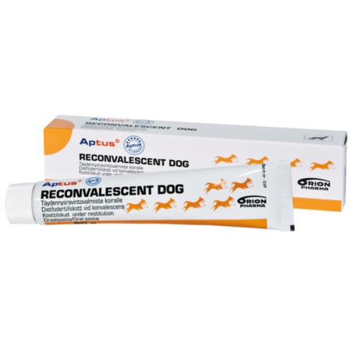 Aptus Reconvalescent hund 100gr