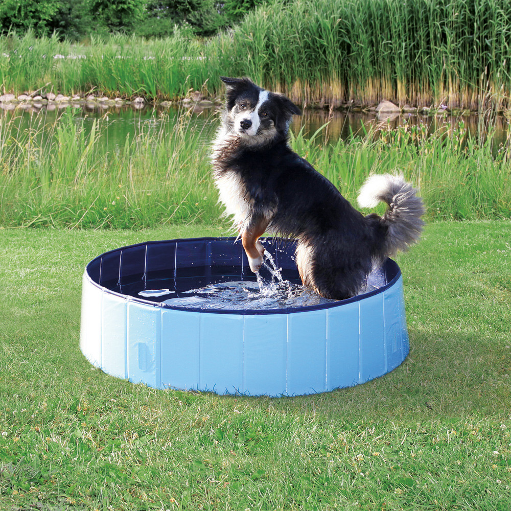 Dog Pool 160cm